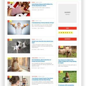 WordPress Magazin Template