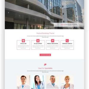 HTML Free Hospital Theme