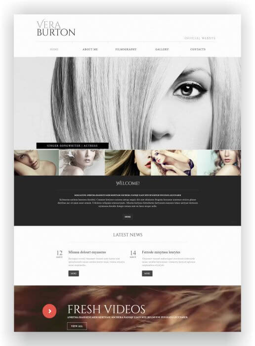 Solo Artist Website