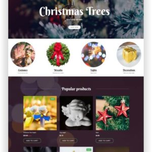 Christmas Shop Theme