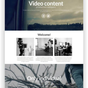 MotoCMS Video Theme