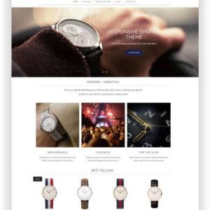 Shopify Accessoires Shop