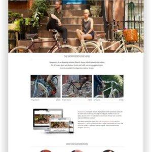 Shopify responsive Vintage Shop