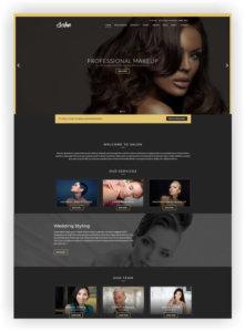 WordPress Beauty Themes