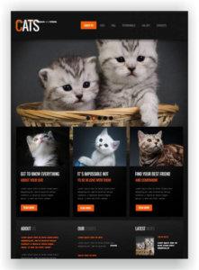 Cats Website