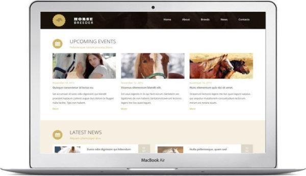 Website Template for Horse Breeding Farm