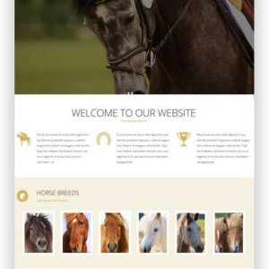 Website Template for Horse Breeding Farm