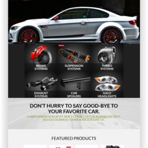 WooCommerce Cartuning Store Theme