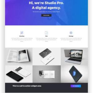 WordPress creative agency