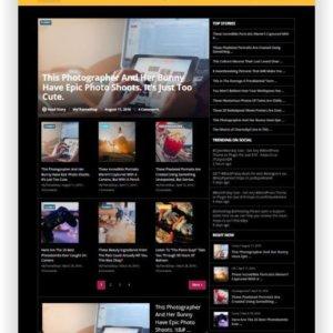 WordPress Nachrichten Magazin