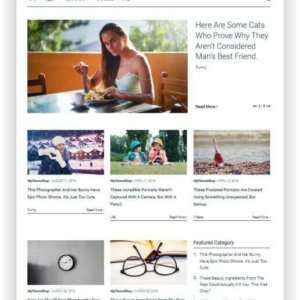 WordPress minimal Magazine Theme