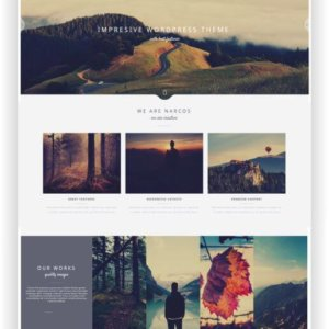 WordPress Creative Multitheme