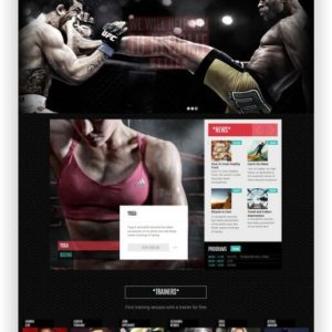WordPress Fitnesswebsite