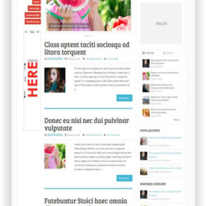 WordPress Multitheme for Blog and Magazine