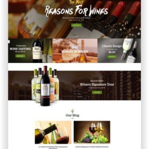 Magento Wine Shop Theme