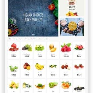 Onlineshop für vegane Lebensmittel