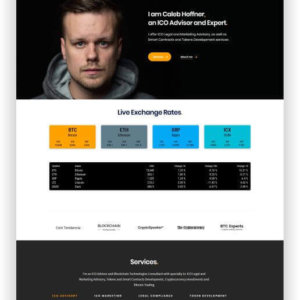 WordPress ICO Theme