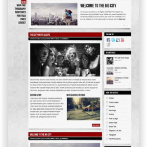 WordPress theme for personal blog